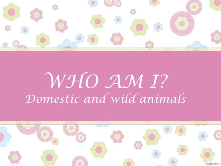 WHO AM I?Domestic and wild animals