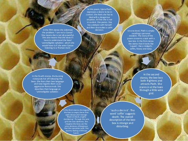 the arrival of the beebox Arrival of the bee box sylvia plath pg 194 content summary • in this poem, sylvia plath expresses a desire to be in control she feels she has to deal with a dangerous situation - the arrival of a bee box.