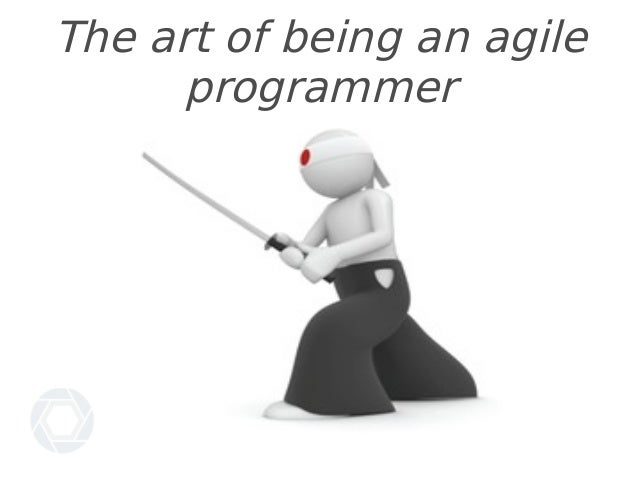 The art of being an agile programmer