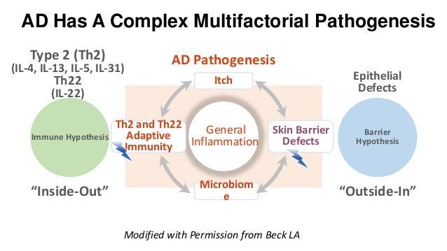 The atopic dermatitis pathogenesis and implications for alopecia areata Slide 3