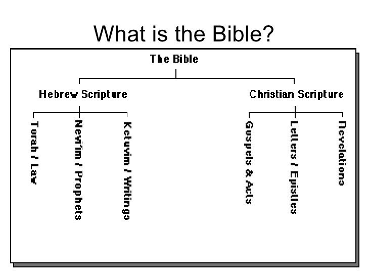 authority of the bible pdf