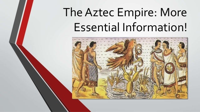 The Aztec Empire: More Essential Information!