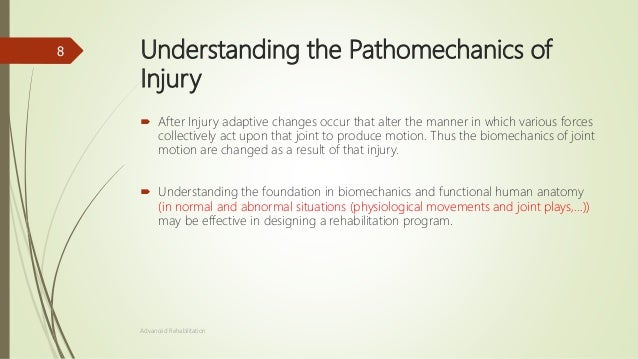 The basis of injury rehabilitation