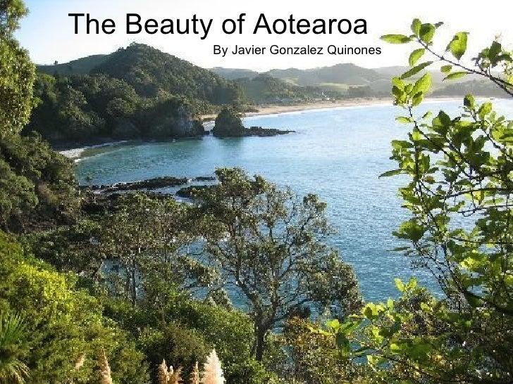 The Beauty of Aotearoa By Javier Gonzalez Quinones