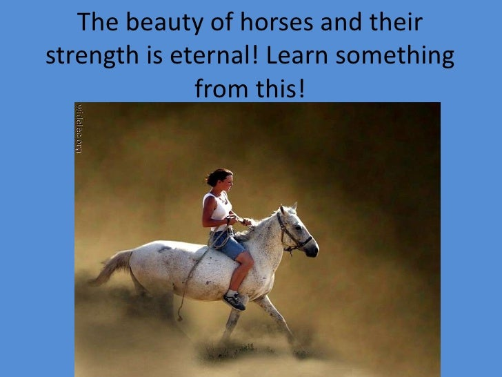 The beauty of horses and their strength is eternal! Learn something from this!<br />