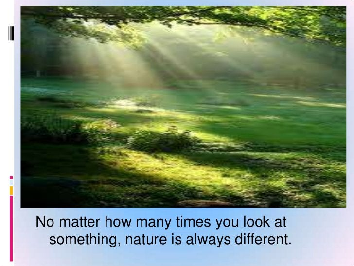 Nature can bring a lot of beauty into our lives.