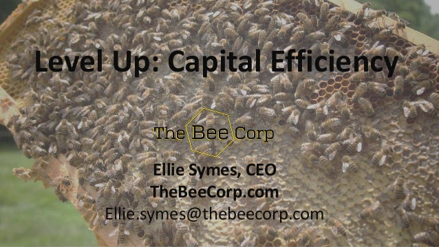 Ellie Symes, CEO TheBeeCorp.com Ellie.symes@thebeecorp.com Level Up: Capital Efficiency