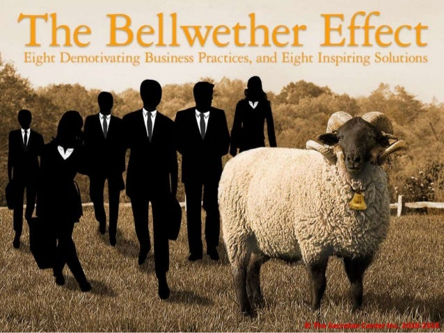 Bellwether_Hold © The Secretan Center Inc. 2018-2019