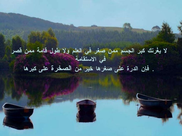 The Best Arabic Wise Quotes Slide 2