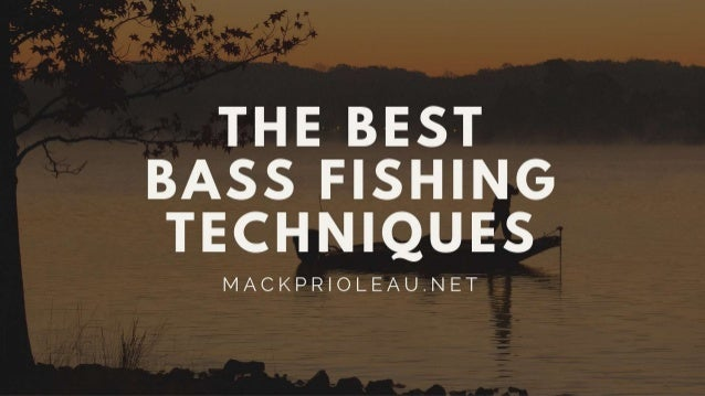The Best Bass Fishing Techniques