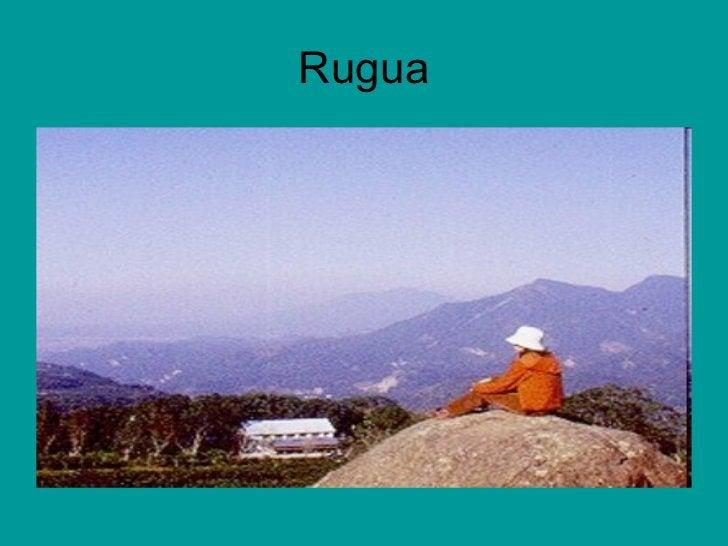 Rugua