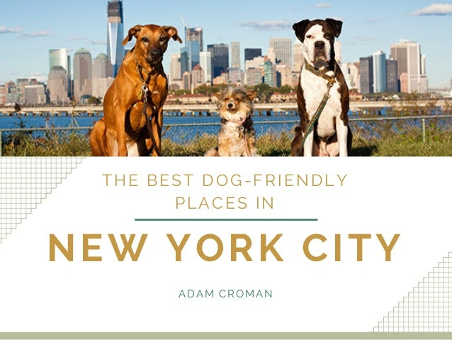 The Best Dog-Friendly Places In NYC