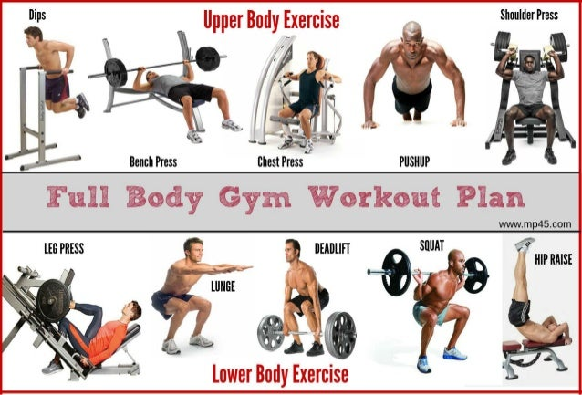 The Best Full Body Gym Workout Guide By MP45