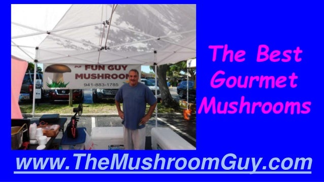 The Best Gourmet Mushrooms www.TheMushroomGuy.com