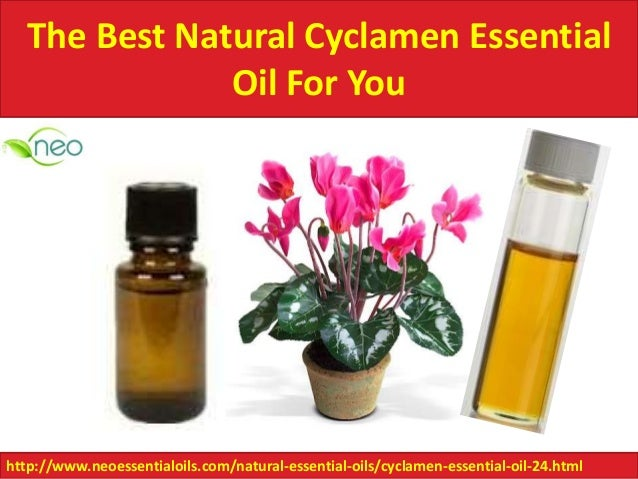 Natural Organic Essential Oils Suppliers