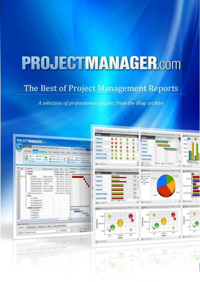 The Best of Project Management Reports   A selection of professional insights from the Blog archive             ProjectMan...