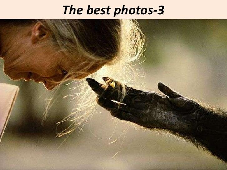 The best photos-3<br />