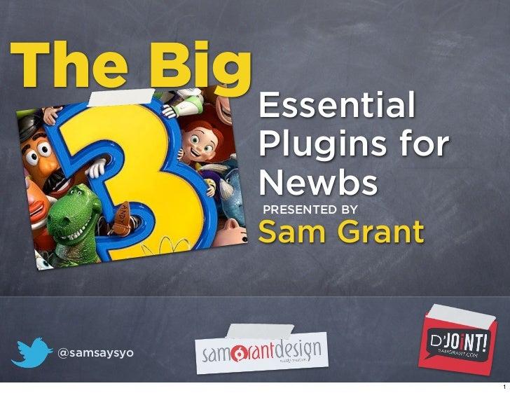 The Big Essential               Plugins for               Newbs               PRESENTED BY               Sam Grant  @samsa...