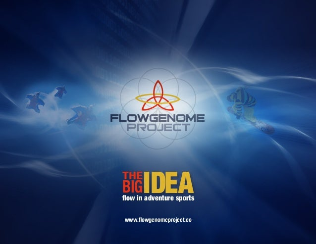 THE      IDEABIG adventure sportsflow inwww.flowgenomeproject.co
