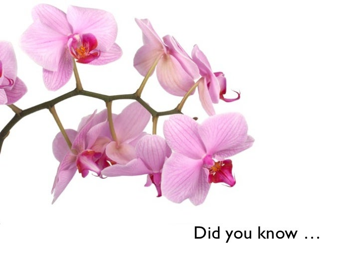 Did you know …
