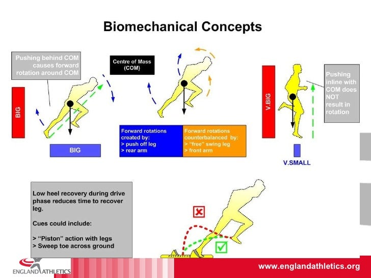 Biomechanics of sprint running. A review.
