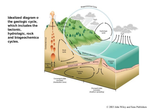 Biosphere Diagram