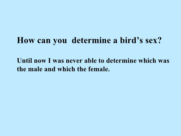 How can you  determine a bird's sex? Until now I was never able to determine which was the male and which the female.