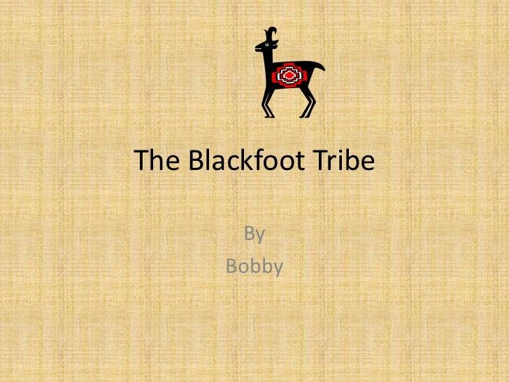 The Blackfoot Tribe