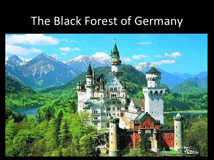 The Black Forest of Germany