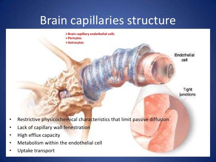 neuroactive steroids