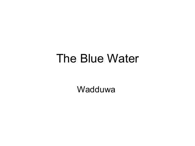 The Blue Water   Wadduwa