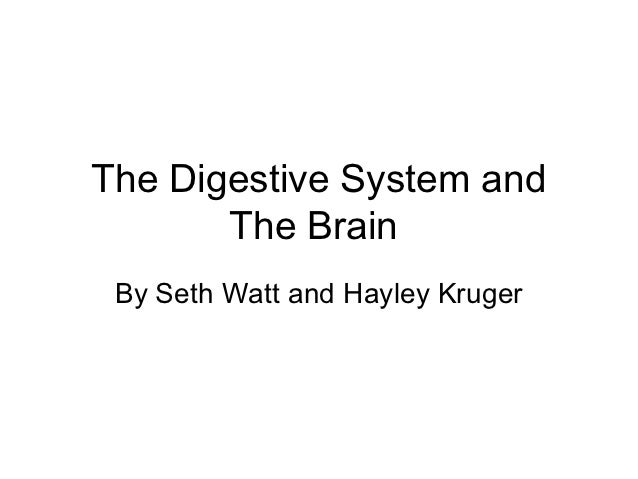 The Digestive System and       The Brain By Seth Watt and Hayley Kruger