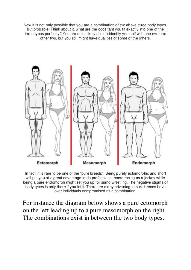 The body types body type combinations 6 ccuart Image collections