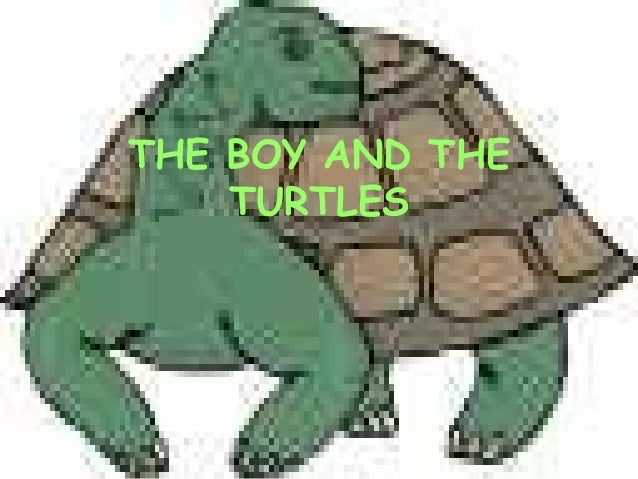 THE BOY AND THE TURTLES