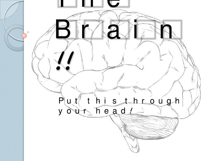 The Brain!!<br />Put this through your head!<br />
