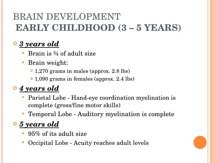 Best brain development foods image 1