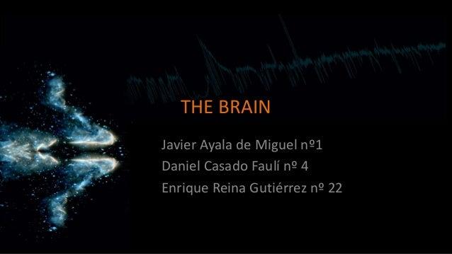 THE BRAIN Javier Ayala de Miguel nº1 Daniel Casado Faulí nº 4 Enrique Reina Gutiérrez nº 22