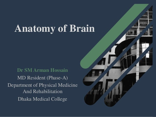 Anatomy of Brain Dr SM Arman Hossain MD Resident (Phase-A) Department of Physical Medicine And Rehabilitation Dhaka Medica...