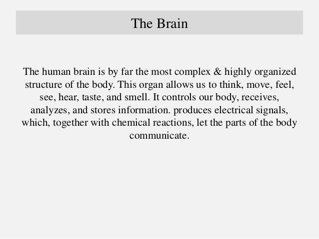 The Brain Anatomy by Dr Arman Hossain  Slide 2