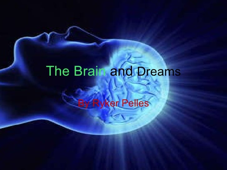 The Brain   and   Dreams By Ryker Pelles