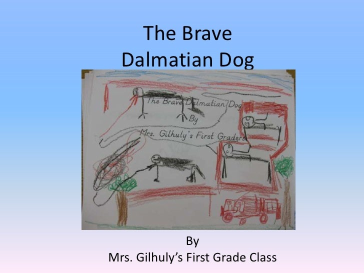 The Brave Dalmatian Dog<br />By<br />Mrs. Gilhuly's First Grade Class<br />