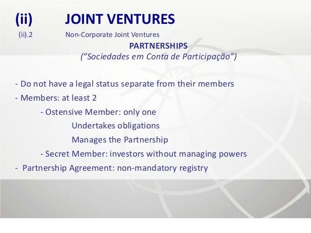 (ii)        JOINT VENTURES(ii).2      Non-Corporate Joint Ventures                            PARTNERSHIPS                ...