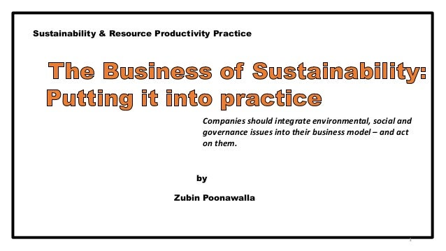 The business of sustainability  putting it into practice