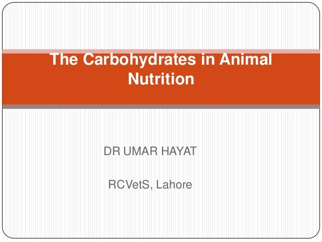 The Carbohydrates in Animal Nutrition  DR UMAR HAYAT RCVetS, Lahore
