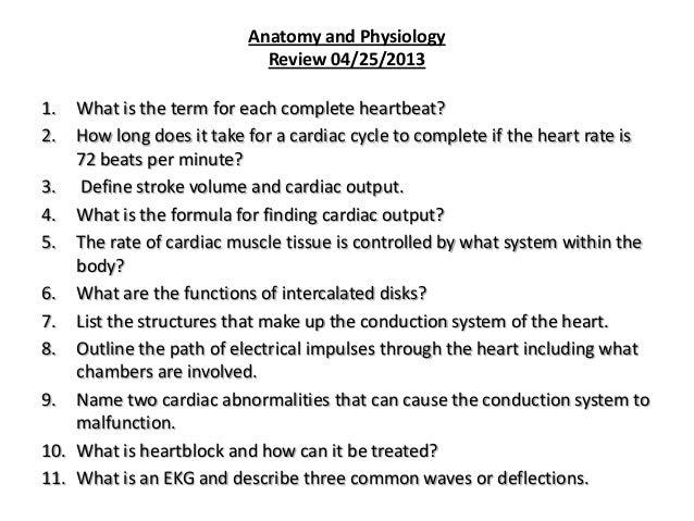 Fein Define Section In Anatomy And Physiology Ideen - Anatomie und ...