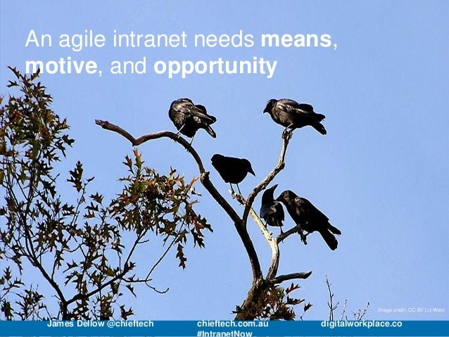 An agile intranet needs means, motive, and opportunity Image credit: CC-BY Liz West James Dellow @chieftech chieftech.com....