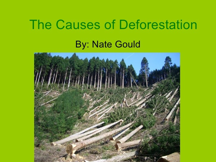 The Causes of Deforestation By: Nate Gould