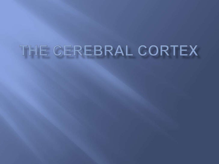 The cerebral cortex is the part of the brain that      is visible from the outside. The cerebral cortex     is the outerm...