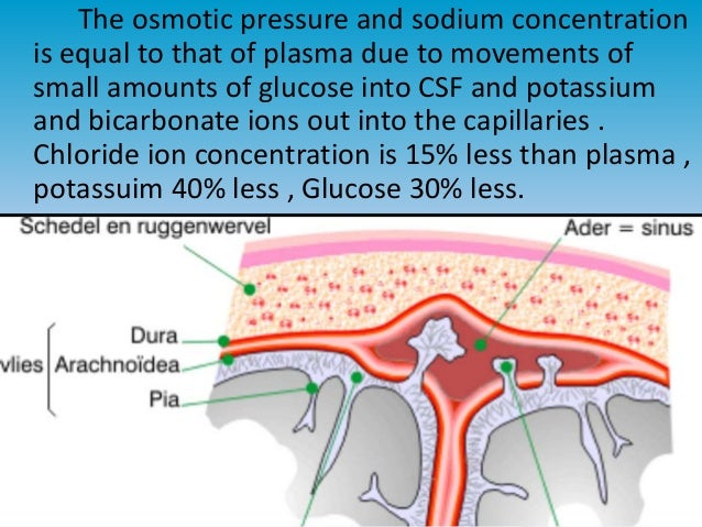 osmosis cell wall and sodium chloride If the cell is set up so that the liquid level  normal saline contains 091% w/v of sodium chloride,  chem1 osmosis and osmotic pressure covers this topicfor a.