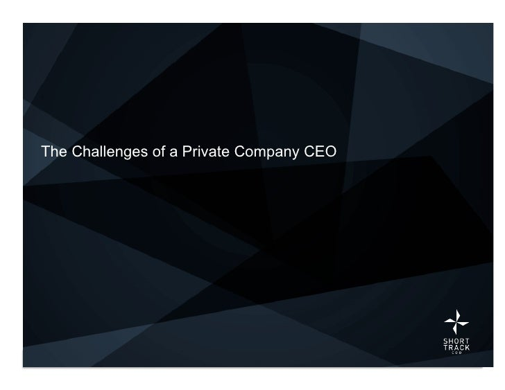The Challenges of a Private Company CEO